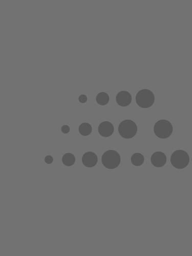 Banner_Casestudy_mobile
